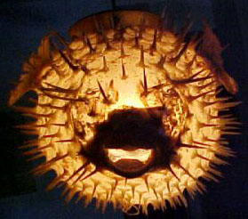 Spooky Haunted Pufferfish
