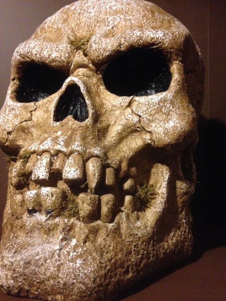 Skull from the upcoming Shameful Tiki Room in Toronto