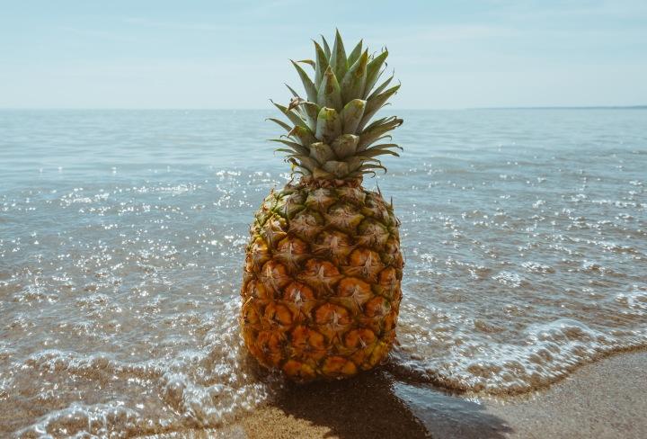 pineapple-crop